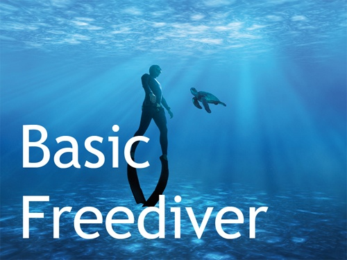 Basic Freediver-Kurs