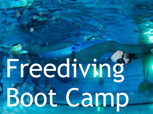 Freediving Boot Camp